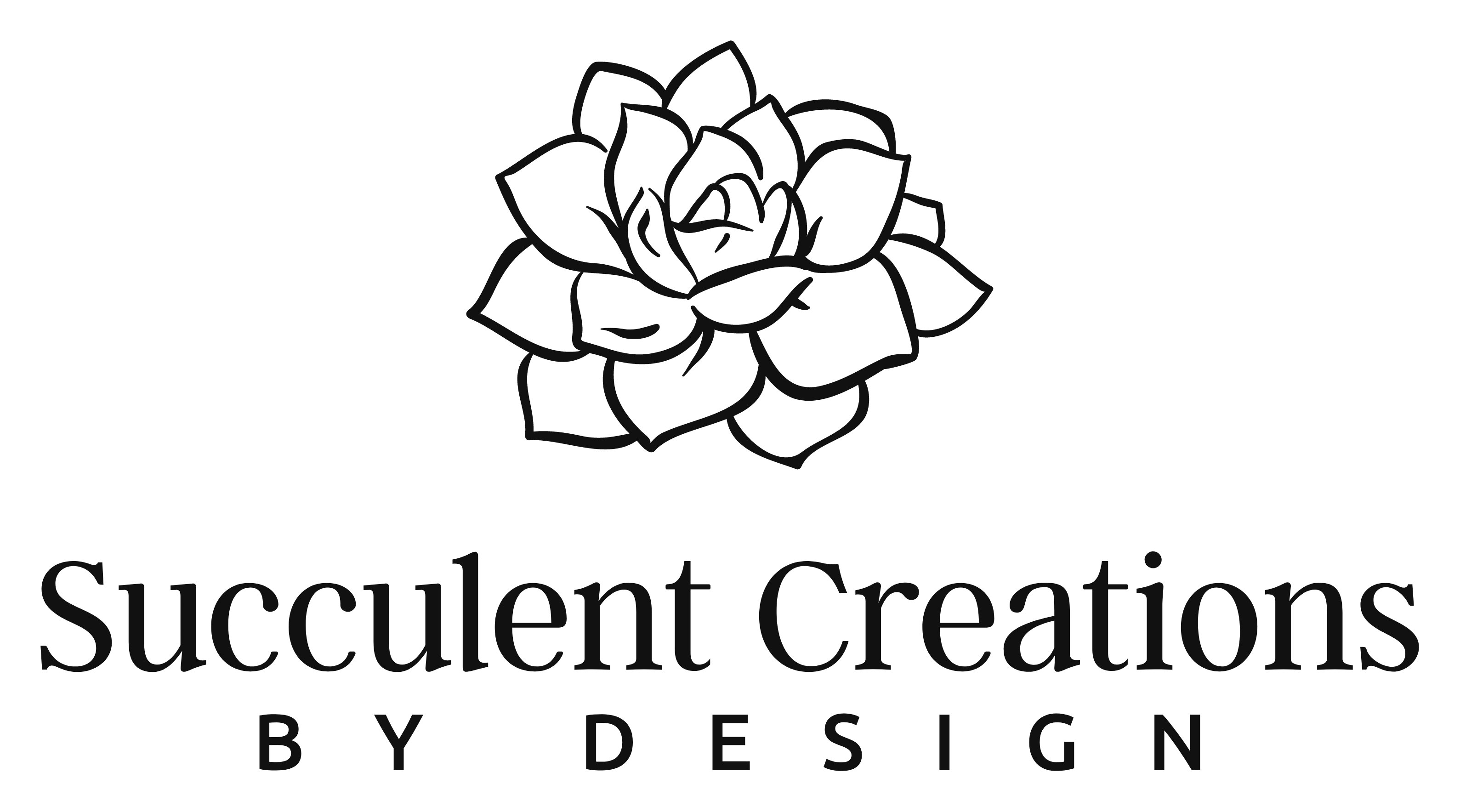 Succulent Creations by Design